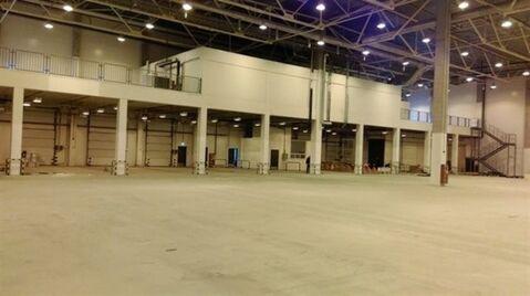 Сдам складское помещение 3500 кв.м, м. Проспект Ветеранов - Фото 2