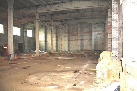 Сдам холодный склад с пандусом 860 кв.м. - Фото 5