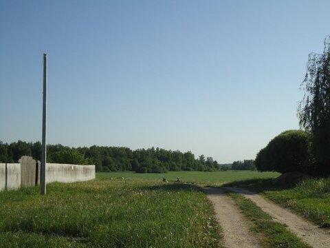 Участок 12 сот. , Новорижское ш, 42 км. от МКАД. Анашкино - Фото 5