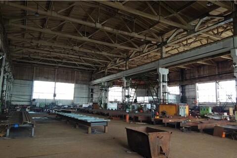Продажа произв-складского комплекса 42000 м2 в Раменском, Михалевича - Фото 4