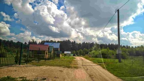 Участок 25 соток в пригороде Пскова, по границе сосновый лес - Фото 3