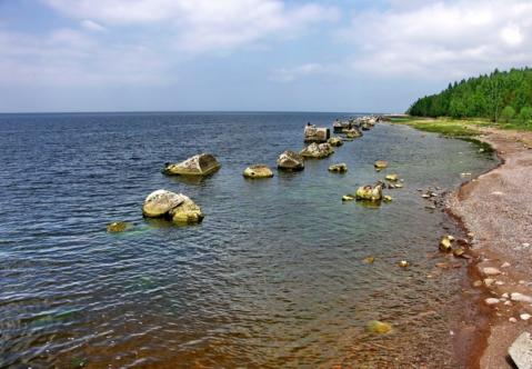 Продается участок у Финского залива,48 соток, дер.Валяницы - Фото 3