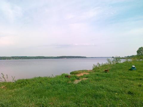 Первая линия р.Волга, участок 18 сот, коммуникации - Фото 1