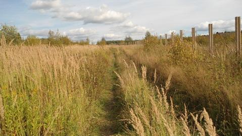 Земельный участок 5,67 Га рядом с деревней Сорокино - Фото 1