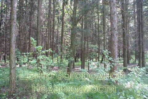 Участок, Киевское ш, Боровское ш, 20 км от МКАД, Милюково, коттеджный . - Фото 4