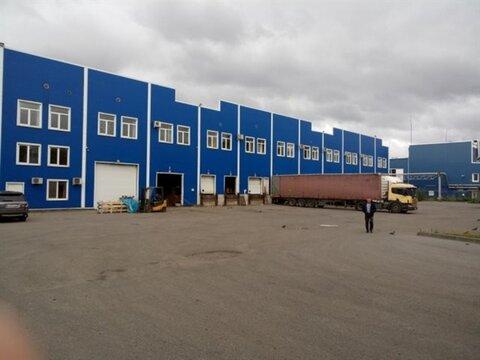 Сдам складское помещение 1828 кв.м, м. Бухарестская - Фото 1