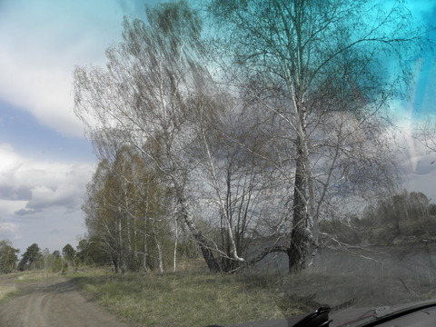 Продам дешево 10 гектар земли в Сухобузимском районе на берегу Енисея - Фото 5