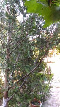 Аренда комнаты посуточно, Штормовое, Сакский район, Ул. Морская - Фото 2