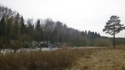 Участок 1,68 Га знп в 27 км по Калужскому шоссе - Фото 3