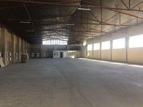 Сдам складское помещение 968 кв.м, м. Проспект Ветеранов - Фото 3