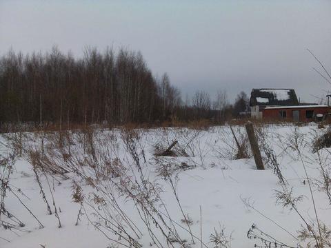 Продам земельный участок в д. Куземино, Земельные участки в Бору, ID объекта - 201258018 - Фото 1