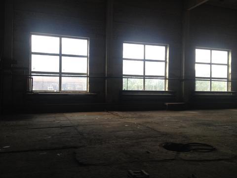Сдадим в аренду здание склада площадью 643,6 кв.м - Фото 4