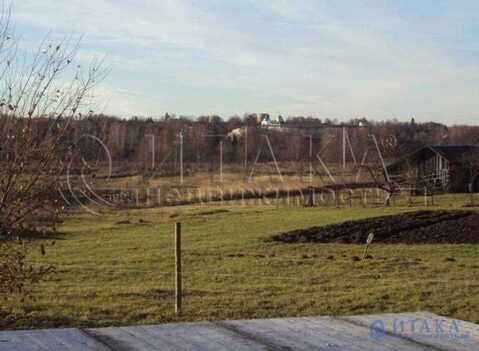 Продажа участка, Нижний Крупск, Печорский район - Фото 3