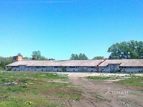 Продажа склада, Веневский район - Фото 1