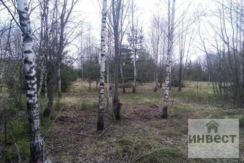 Продается земельный участок 9 соток, д.Купелицы, СНТ Купелицы - Фото 5
