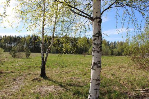 Земельный участок в д. Валяницы - Фото 4