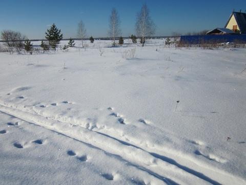 Участок в районе Заозерном - Фото 2