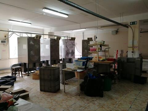 Аренда помещения под пищевое производство 250 кв м - Фото 2