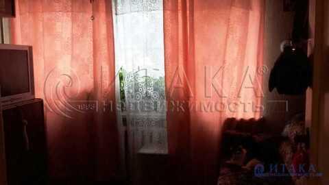 Продажа квартиры, м. Проспект Ветеранов, Дачный пр-кт. - Фото 1