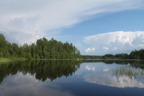 Участок рядом с озером - Фото 1