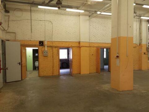 Сдам производственное помещение 560 кв.м, м. Черная речка - Фото 3