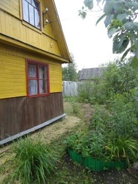 В обжитом, зеленом садоводстве массив Кобрино уютная дача на 6 сотках - Фото 2