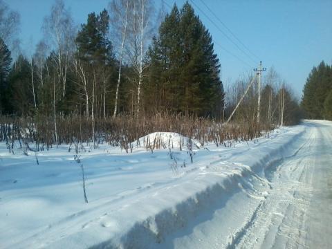 Земельный участок рядом с лесом - Фото 4