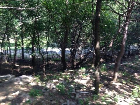 Купить земельный участок в Ялте, р-он «Поляна Сказок» 15 соток - Фото 3