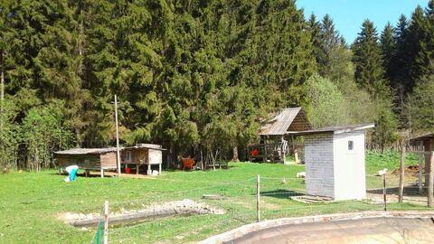 Продается усадьба, два дома, участок 50 соток - Фото 5