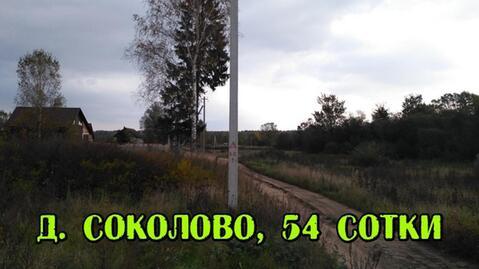 Участок 54 сотки в д. Соколово, с коммуникациями - Фото 1