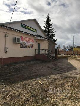Продажа готового бизнеса, Тверь, Старицкое ш. - Фото 2