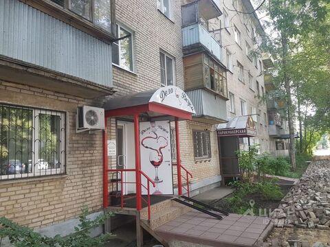 Продажа псн, Пушкино, Воскресенский район, Улица Чехова - Фото 1
