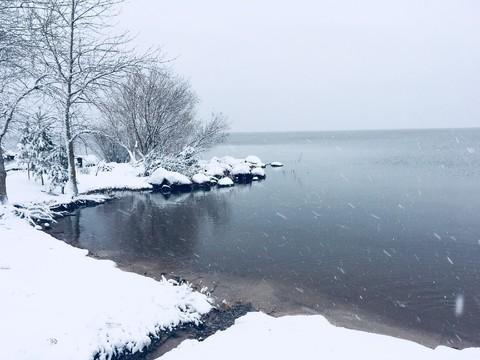 Участок на первой линии Чудского озера - Фото 1