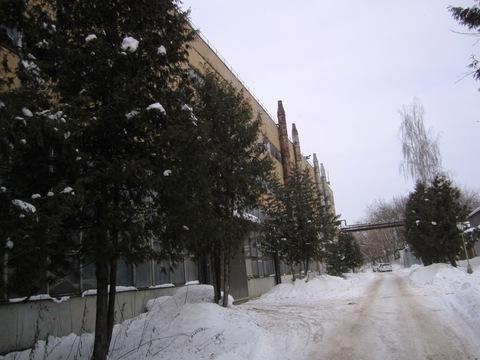 Предлагается в аренду помещение в Дмитрове, ул. Профессиональная, 135. - Фото 2