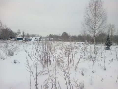 Продается земельный участок в с. Толбухино - Фото 4