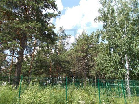 Продажа участка, Кудряшовский, Новосибирский район - Фото 2