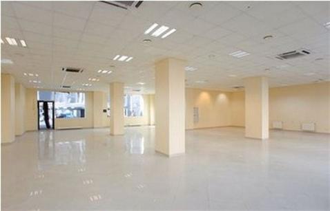 Сдам офисное помещение 278 кв.м, м. Василеостровская - Фото 1