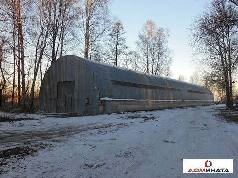 Аренда склада, м. Автово, Дворцовый проспект д. 1 лит В - Фото 1