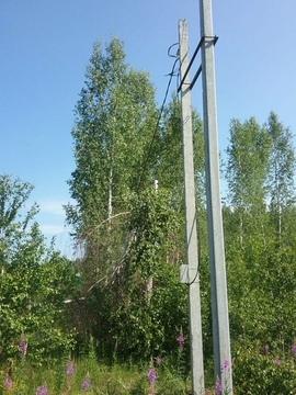 Продам земельный участок д.Осиновка - Фото 2