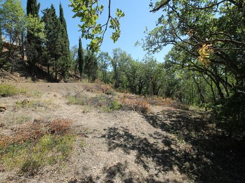 Продам земельный участок 7.5 соток в Алуште - Фото 2