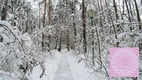 Квартира с панорамными окнами и видом на лес Рублевское шоссе - Фото 5