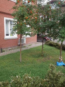 Сдам 4-х комнатную квартиру с отдельным входом! - Фото 2