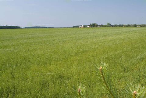 Продается земельный участок площадью 5,3 Га - Фото 1
