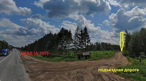 Земельный участок 1,75 Га в с. - Фото 2