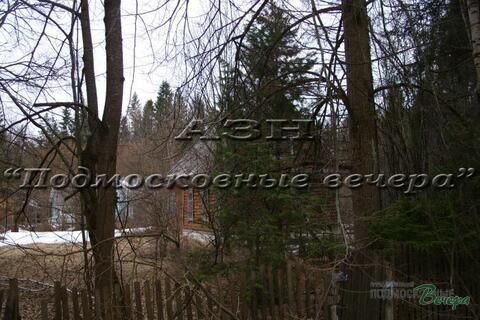 Ярославское ш. 50 км от МКАД, Абрамцево, Участок 36 сот. - Фото 3