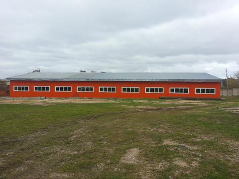 Помещения пл. 550 м2 под склад, производство, теплый склад, склад . - Фото 4