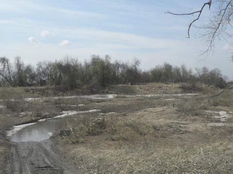 Продам дешево 10 гектар земли в Сухобузимском районе на берегу Енисея - Фото 3