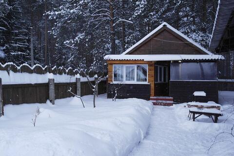 Частный дом в турбазе Чайка - Селигер, в сосновом бору, у озера! - Фото 1