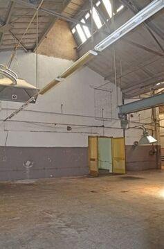 Сдам производственное помещение 905 кв.м, м. Балтийская - Фото 4