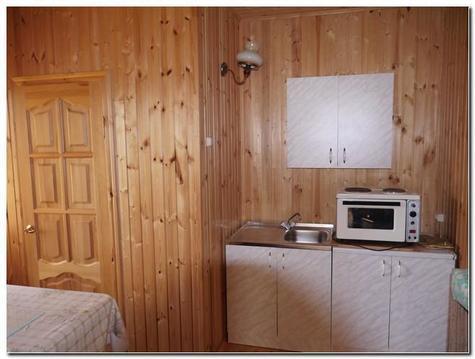 Зимняя дача в пск Аида ! Рядом лес, озеро и электричка - Фото 5